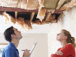 Зачем и кому нужна строительная экспертиза?